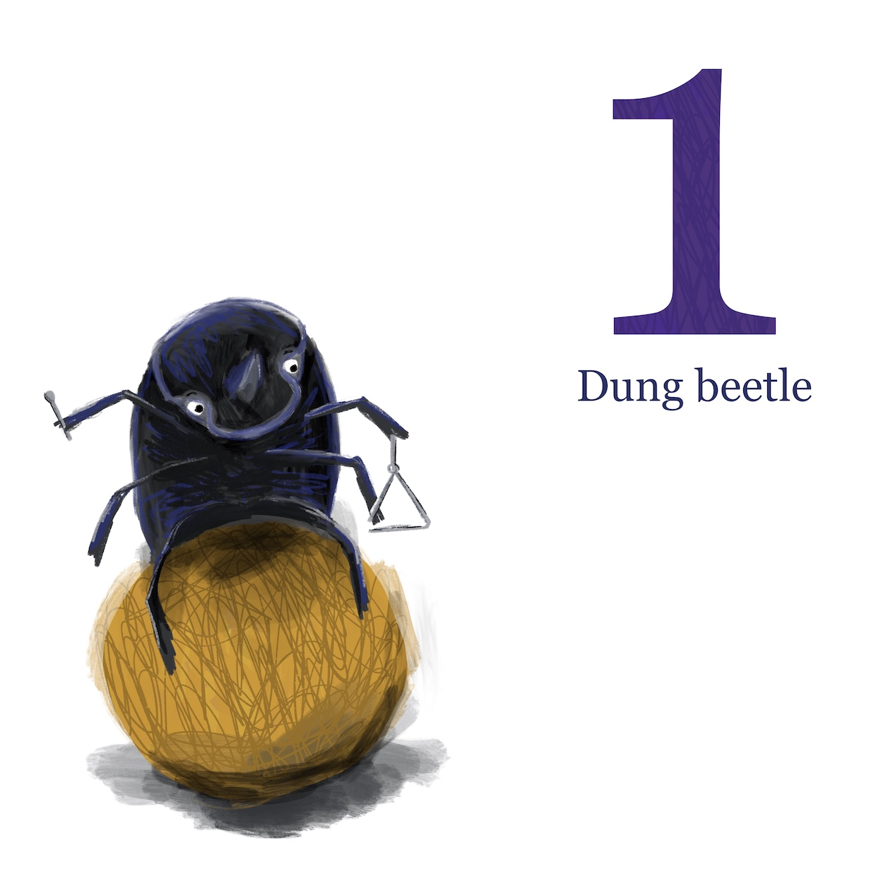 Dung Beetle by Emily House
